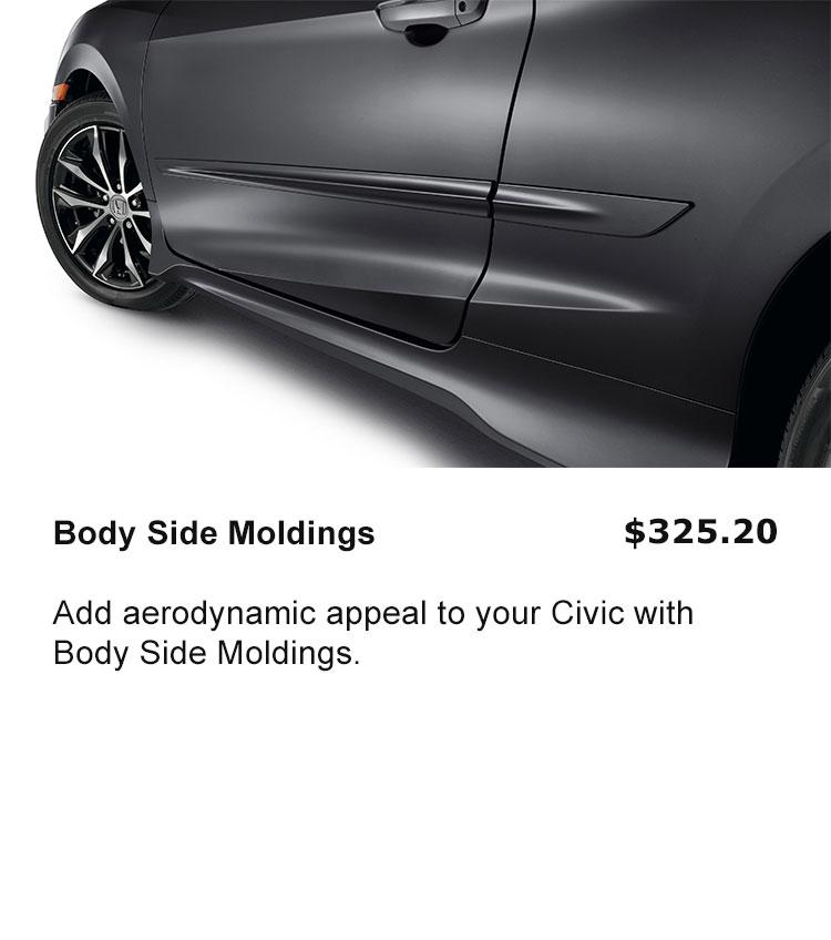 Body Side Mouldings