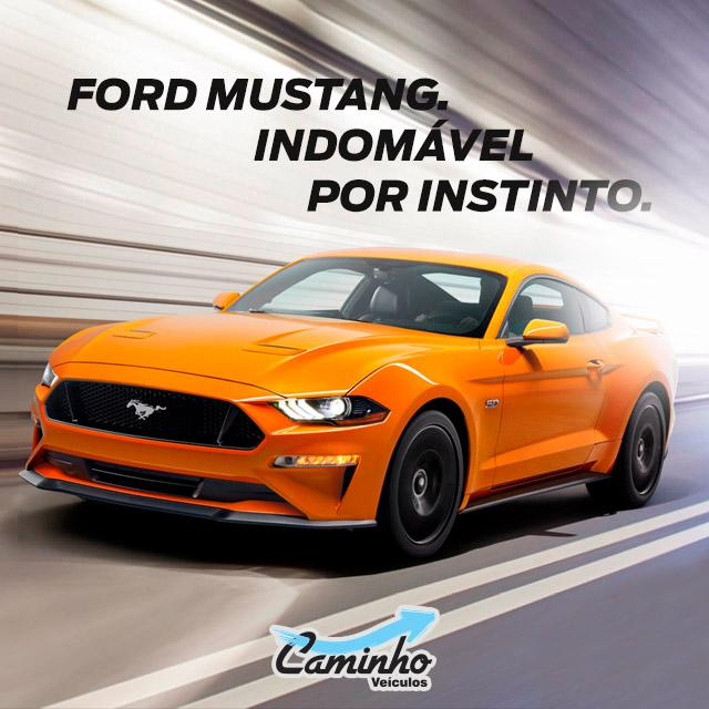 Novo Mustang 2018 Ford Caminho Piracicaba Americana São Jose do Rio Preto