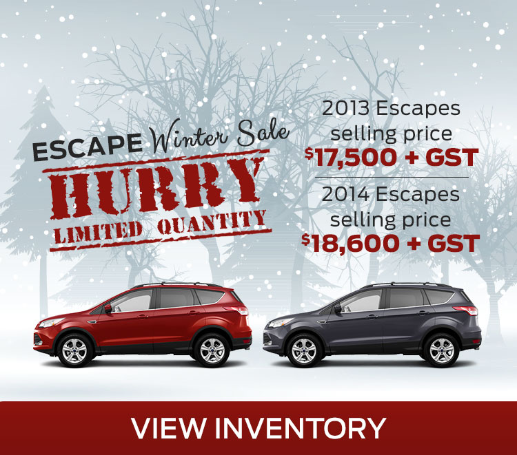 Escape WInter Sale mobile