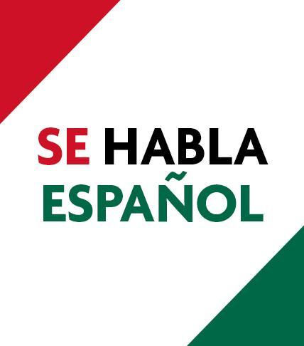 Spanish Toyota Dealer