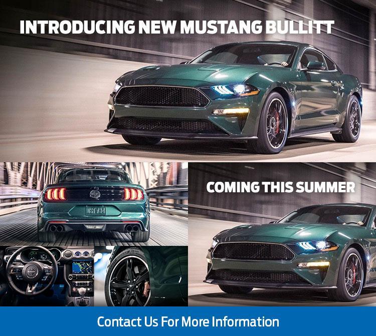 2019 Mustang