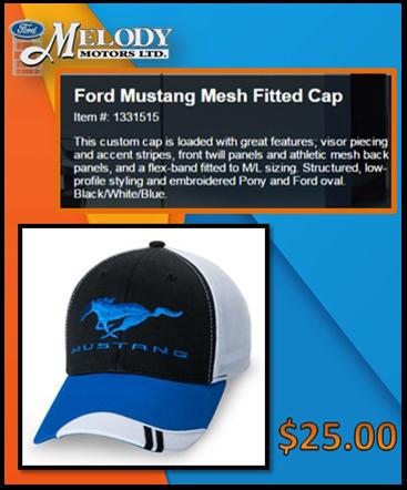 Mustang hat