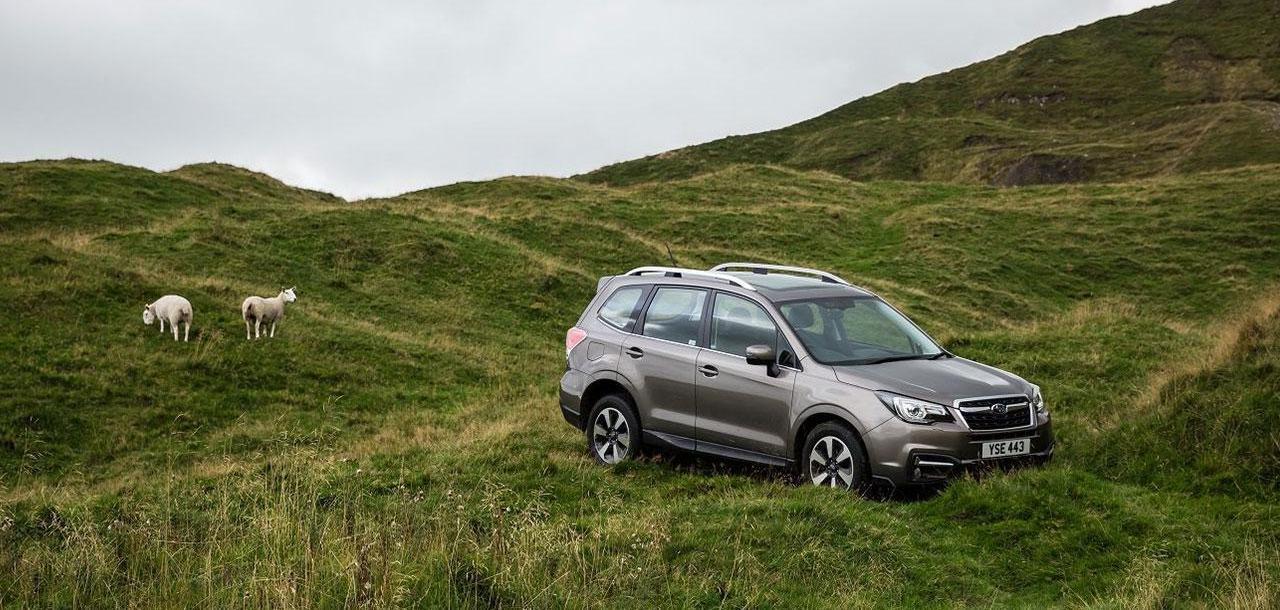 Subaru Used Car Offers
