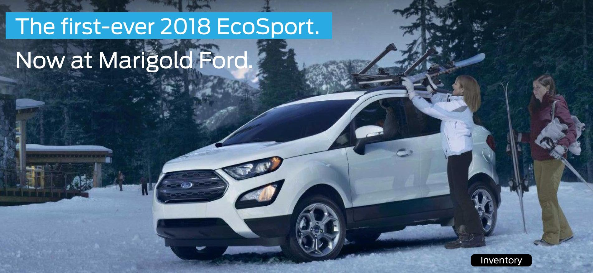 EcoSport-Inventory