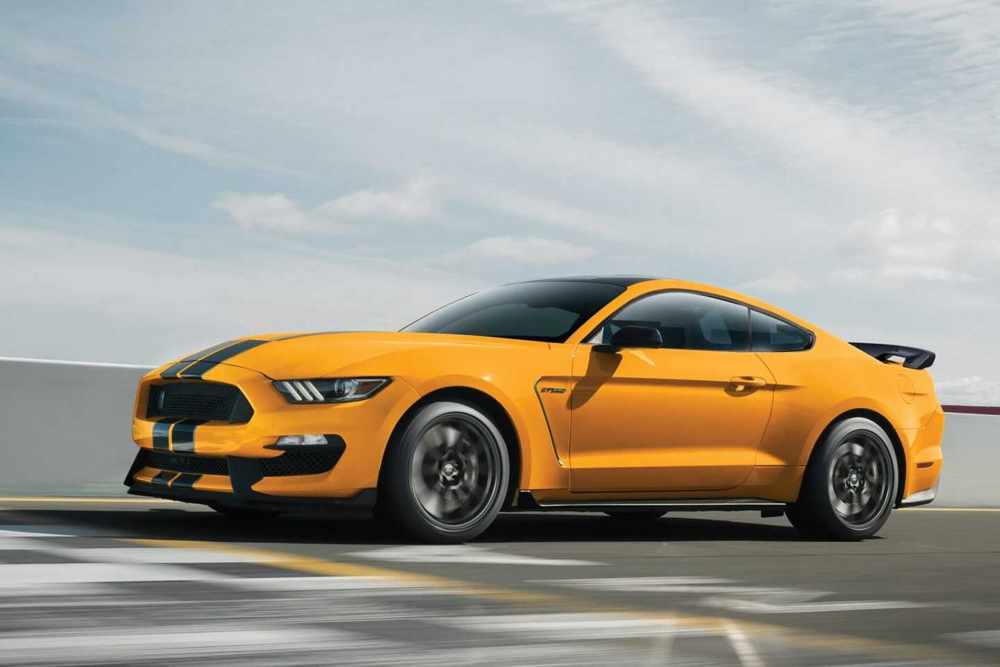 Shelby 2019