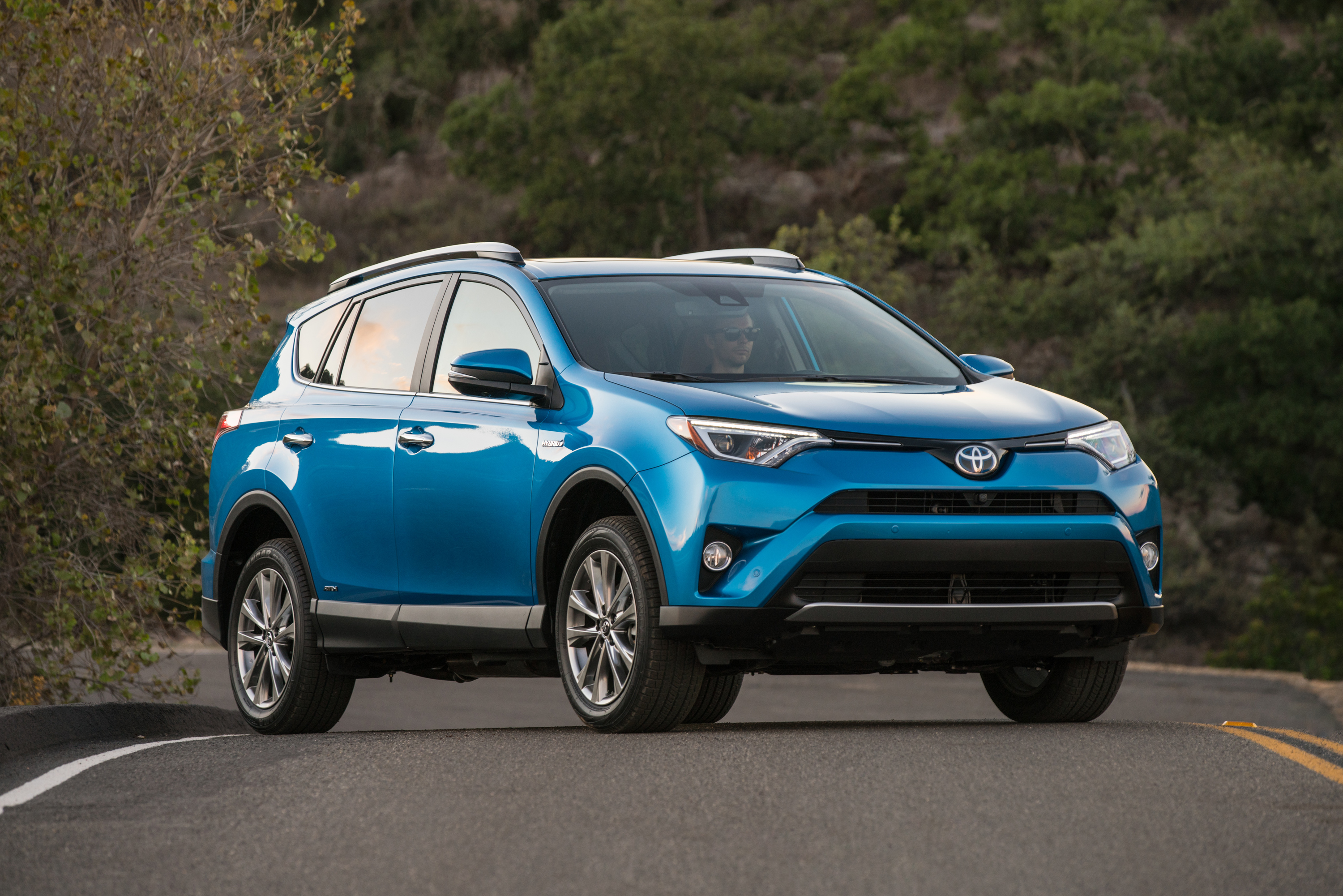 2017 toyota rav4 hybrid at hometown toyota near boise. Black Bedroom Furniture Sets. Home Design Ideas
