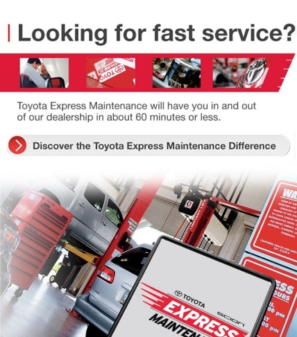 Looking for fast service