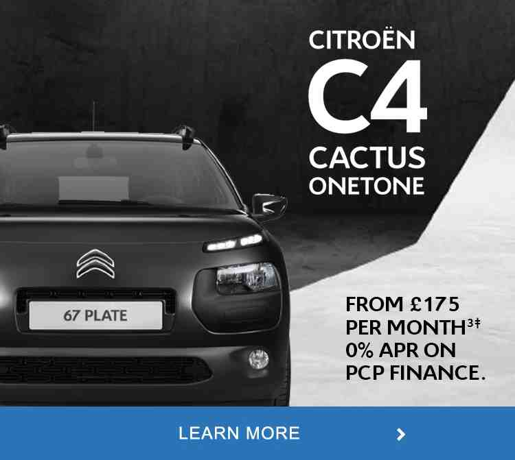 Cactus with 0% APR
